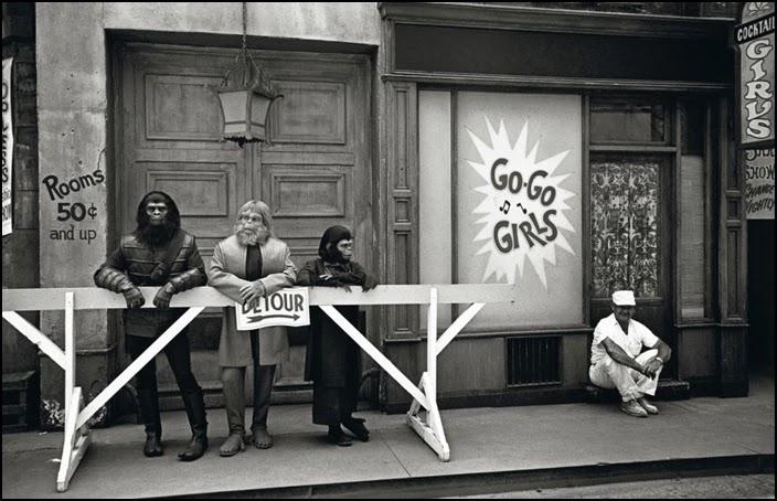 album magnum photos el planeta de los simios